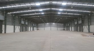 65000 Sq.ft Industrial Shed for rent in Chhatral Ahmedabad
