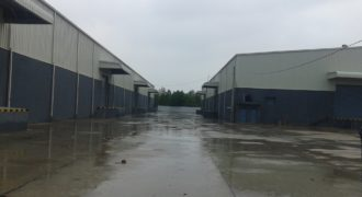 50000 sq.ft Industrial Shed for Rent in Kadi, Ahmedabad